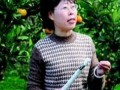 中幼网胡红梅:绿色家园
