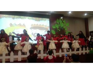 2015年圣诞节活动 《 艾丽丝梦幻